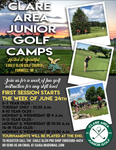 Golf Lesson Flyer